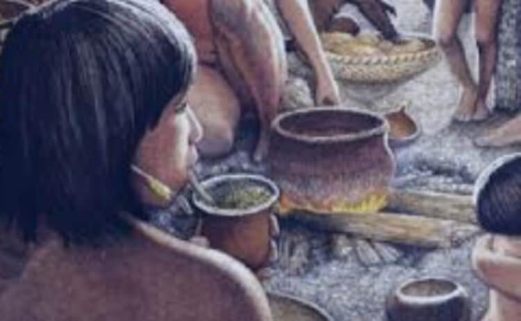 Historia de la yerba mate